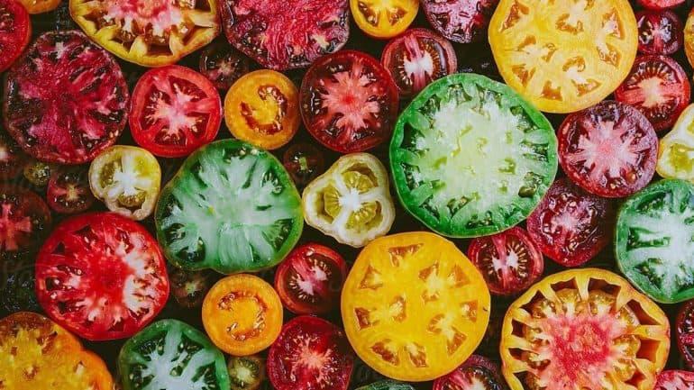 menyimpan tomat