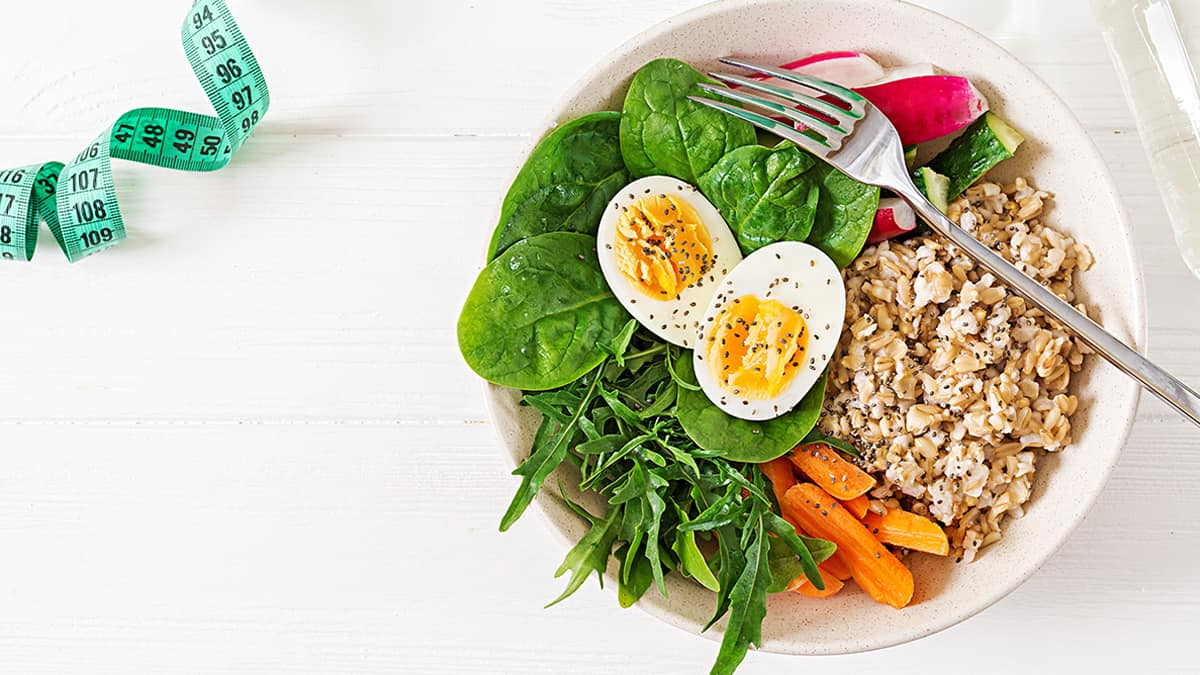 plant-based diet adalah