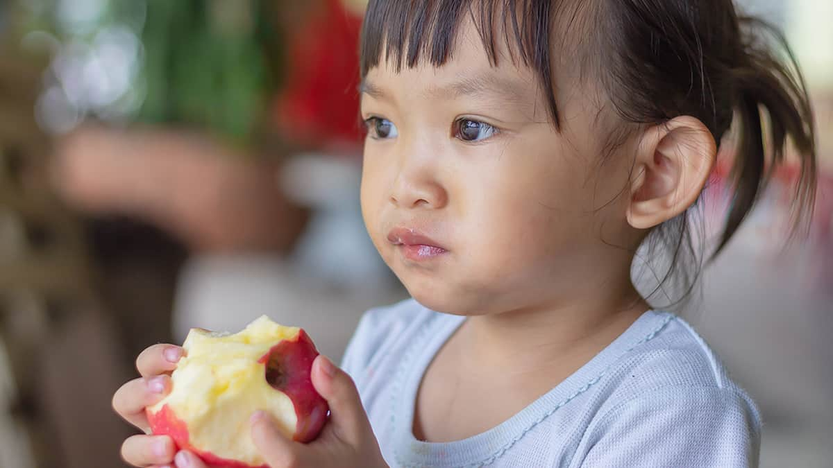 vitamin otak anak